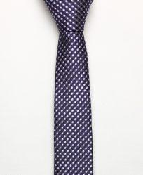 cà vạt tím sọc xanh - cv170202