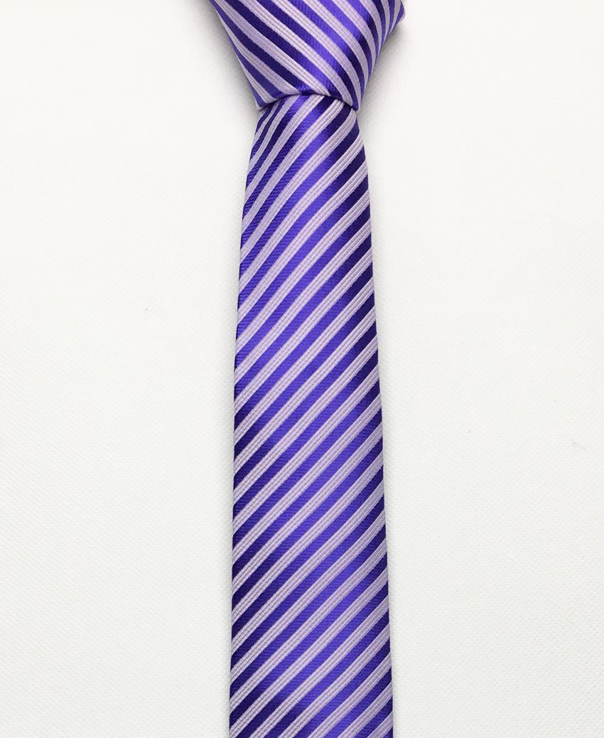 Cà vạt tím – cv170313